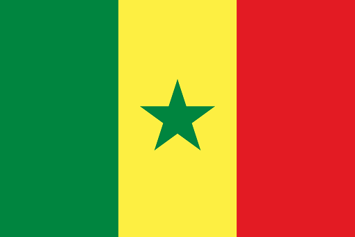senegal-visa-translation