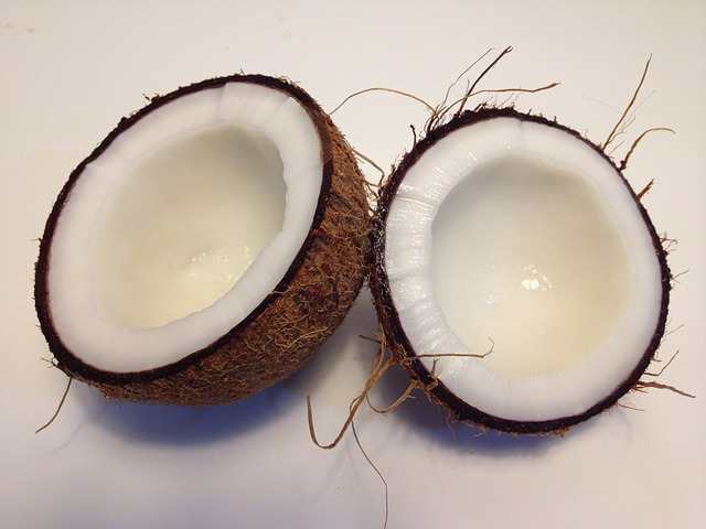 O coco Portuguese translation of Coconut